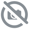 Carte Réseau Intel Ethernet Server Adapter X520-SR2 - E10G42BFSR